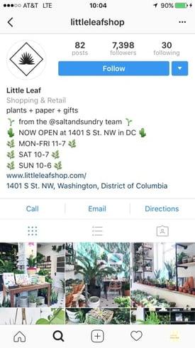 Business-Profil-Beispiel: LittleLeaf