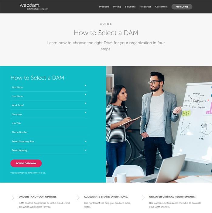 Beispiele für ansprechendes Landing-Page-Design – WebDAM