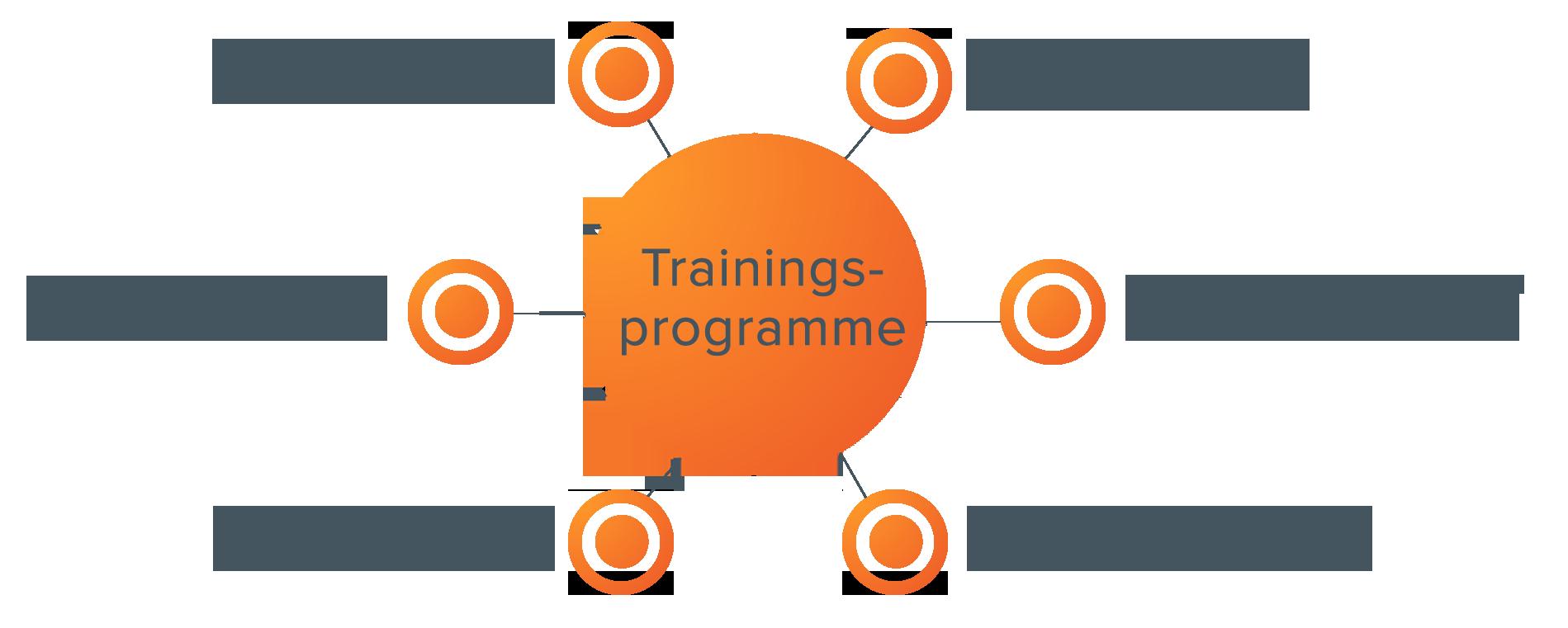 Inhaltserstellung mit Themenclustern – Themencluster Trainingsprogramme
