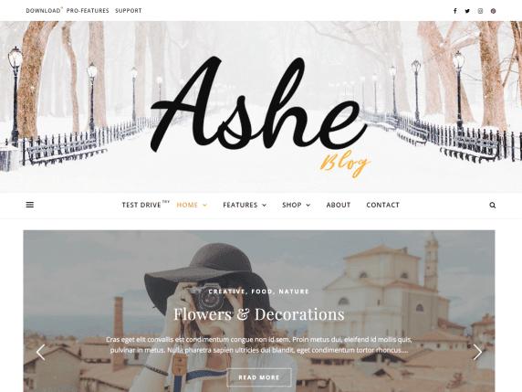 Ashe_WordPress Template