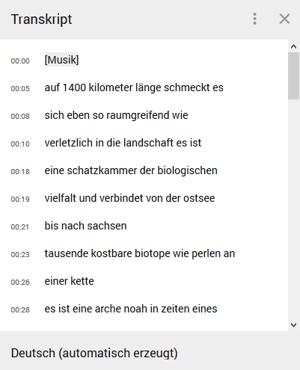 HubSpot-YouTube-Funktionen-Tipps-Tricks-03-Beispiel-Transkript