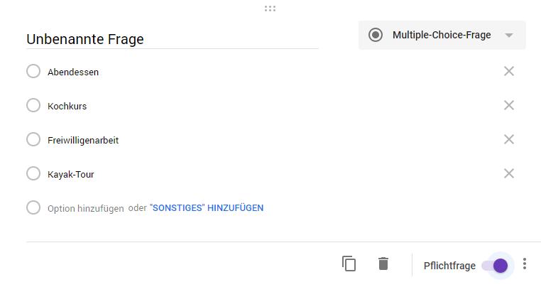 HubSpot-Umfragen-erstellen-25-Google-Frage
