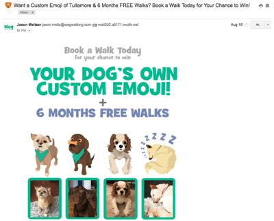 Betreff in einer E-Mail: Beispiel Hundebetreuungssservice Wag