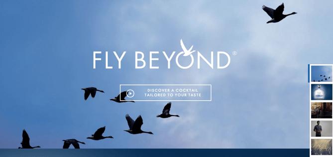 CTA auf der Homepage von Grey Goose
