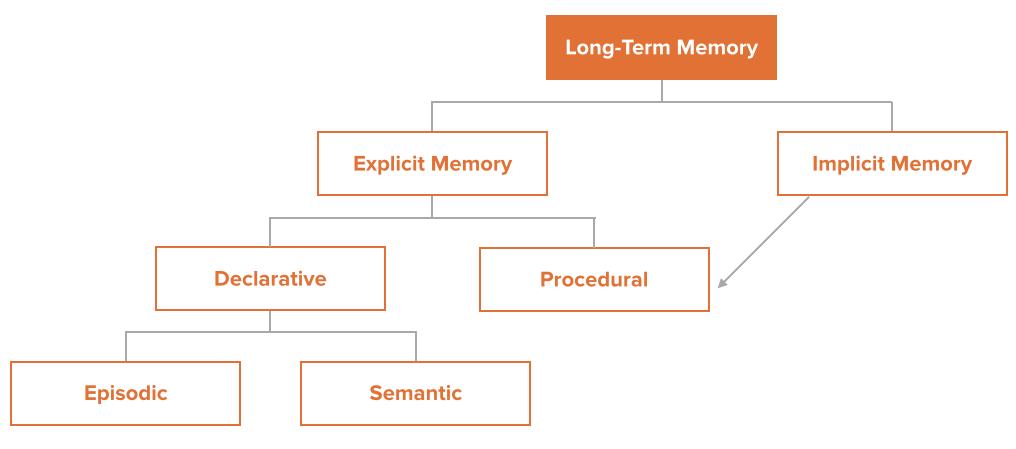 long-term-memory-1-1.png