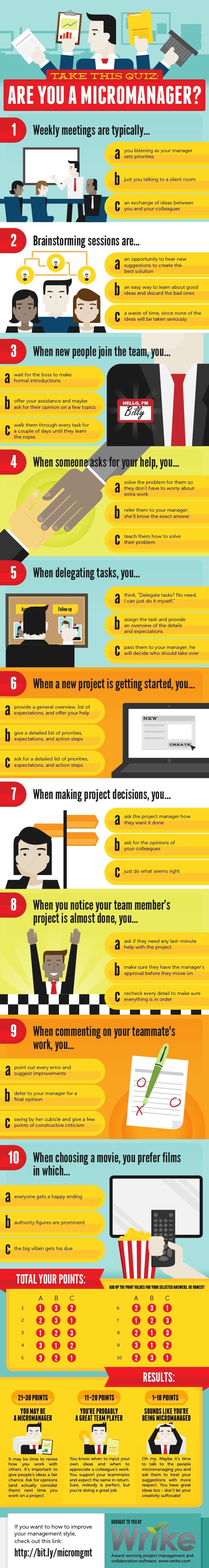 mikromanager-quiz-infografik.jpg