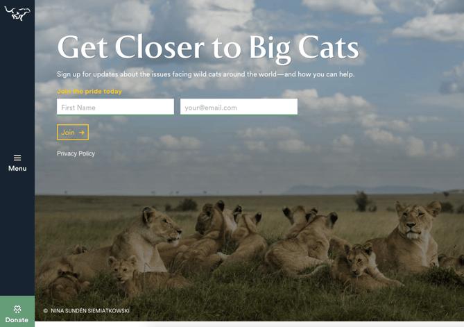 Formular & CTA auf der Homepage von Panthera