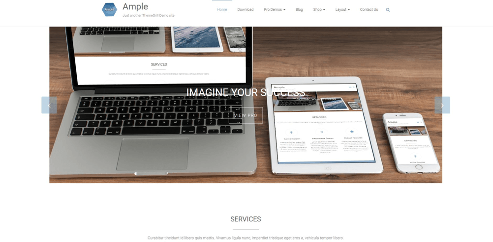 HubSpot-wordpress-template-ample