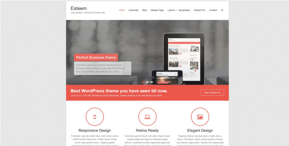 HubSpot-wordpress-template-esteem