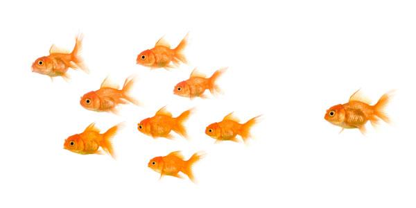 Wenn Kunden abwandern: 5 Fragen, die Sie ihnen unbedingt stellen sollten