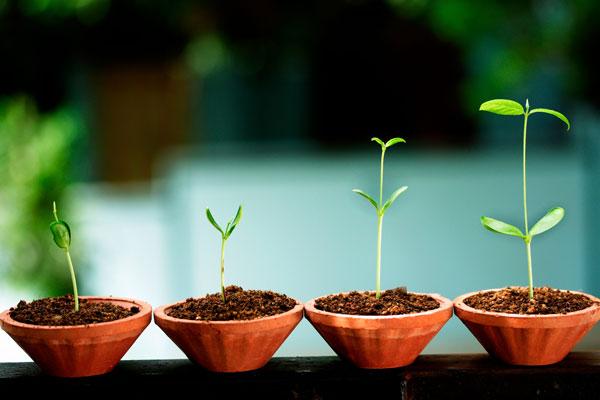 Warum Ihr Unternehmen ein CRM-System braucht, um wachsen zu können